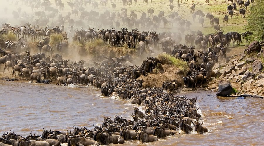 Masai Mara and the Great Migration - Heritage
