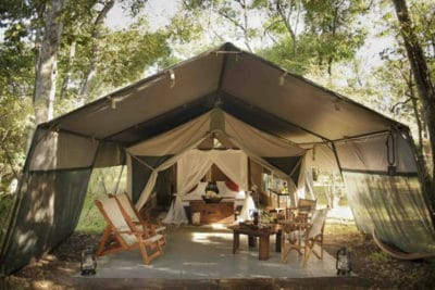 Mara Bush Camp